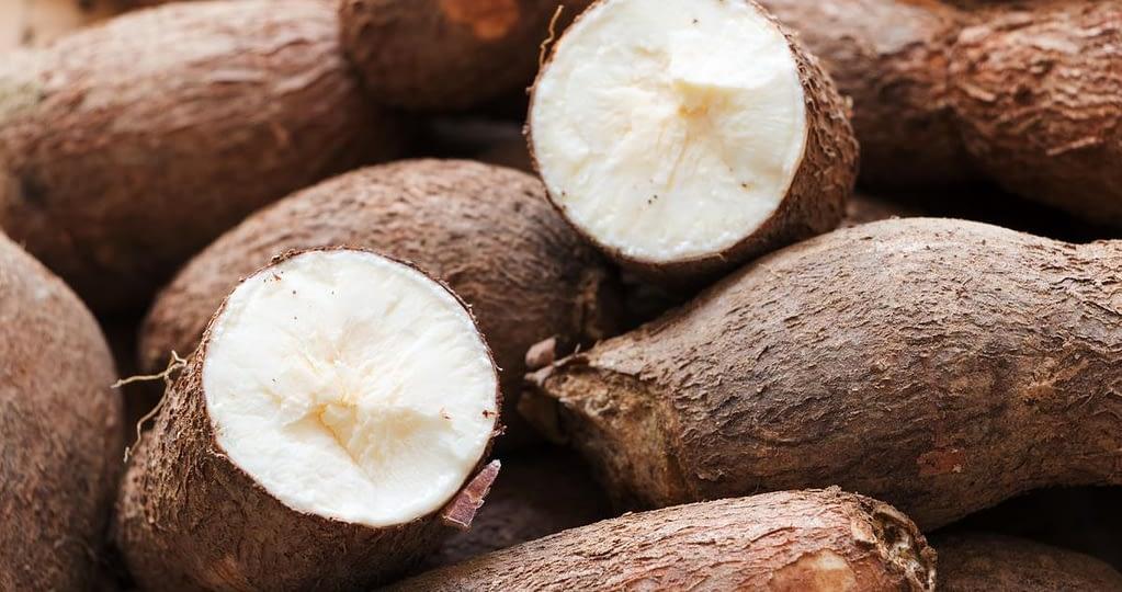 Cassava Tuber for Making Swallow